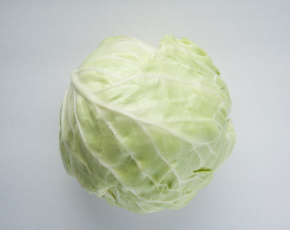 cabbage on white background for turkey cabbage roll recipe