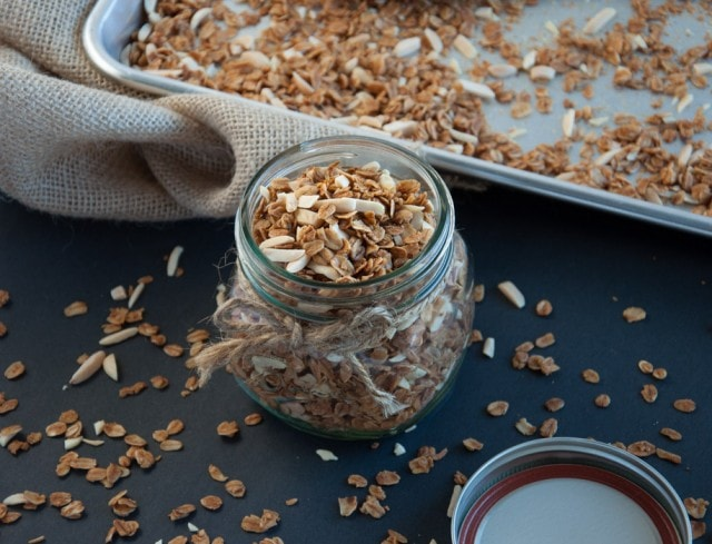 Easy Granola Recipe-113
