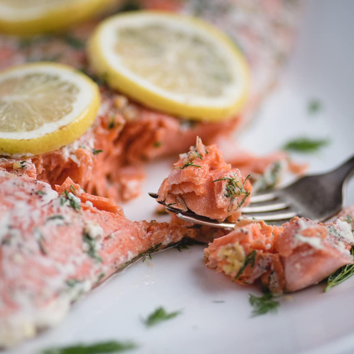Lemon dill salmon close up picture of bite on fork by an oven baked filet